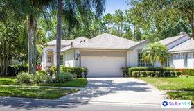 12115 Glencliff Circle, Tampa, FL 33626