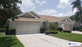 2330 Olive Branch Drive #112, Sun City Center, FL 33573