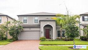 19506 Sea Myrtle Way, Tampa, FL 33647