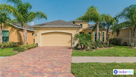1810 Pacific Dunes Drive, Sun City Center, FL 33573