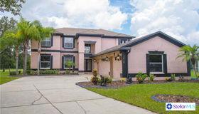 3515 Pine Top Drive, Valrico, FL 33594