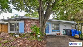 2511 W Jean Street, Tampa, FL 33614
