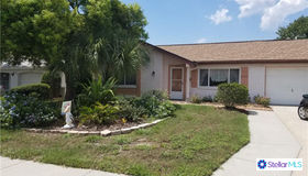 8509 Sun Flower Lane, Hudson, FL 34667