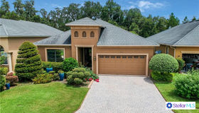 816 Christina Chase Drive, Lakeland, FL 33813