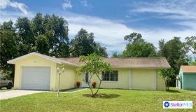 23193 Troy Avenue, Port Charlotte, FL 33980