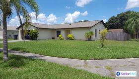 15901 Ironware Place, Tampa, FL 33624