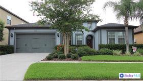 2615 Milford Berry Lane, Tampa, FL 33618