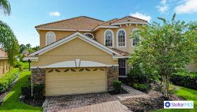 18010 Java Isle Drive, Tampa, FL 33647