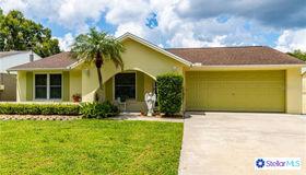 16118 Northglenn Drive, Tampa, FL 33618