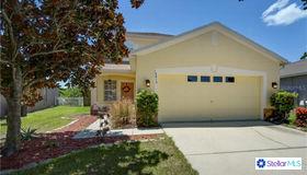 12614 Montford Lane, Riverview, FL 33579