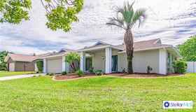 1612 Featherband Drive, Valrico, FL 33594