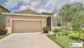 16607 Magnolia Reserve Place, Wimauma, FL 33598