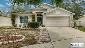 12312 Twinkling Star Place, Riverview, FL 33569