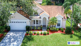 970 Valley View Circle, Palm Harbor, FL 34684