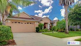 11123 Hyacinth Place, Lakewood Ranch, FL 34202