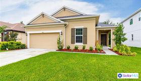 4862 Rolling Green Drive, Wesley Chapel, FL 33543