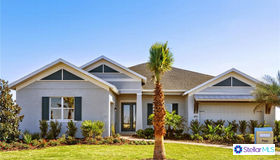 11715 Lake Lucaya Drive, Riverview, FL 33579
