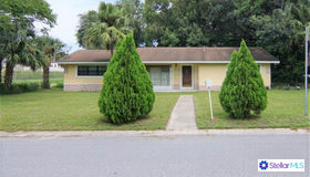 700 S Moss St, Leesburg, FL 34748