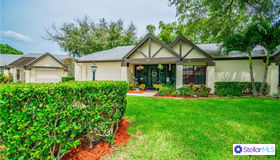 915 Hickory Hill Court, Palm Harbor, FL 34684