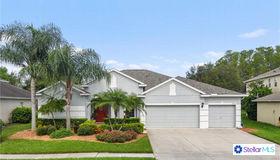 9732 Mountain Lake Drive, Orlando, FL 32832