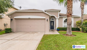 3133 Downan Point Drive, Land O Lakes, FL 34638