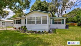8410 N Greenwood Avenue, Tampa, FL 33617