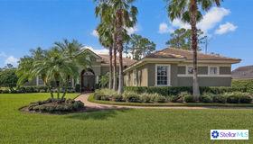 3371 Fernlake Place, Longwood, FL 32779