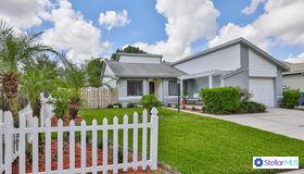 1325 Mohrlake Drive, Brandon, FL 33511