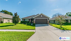 13220 Chipout Lane, Hudson, FL 34669