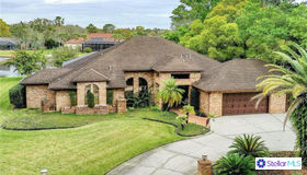 4420 Lake IN The Woods Drive, Spring Hill, FL 34607