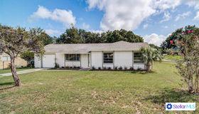 5305 Pale Horse Drive, Orlando, FL 32818