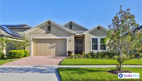 10528 Cardera Drive, Riverview, FL 33578