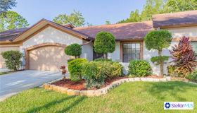 4051 Shoreside Circle, Tampa, FL 33624