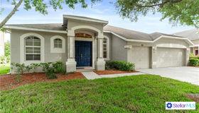 3512 Barnweill Street, Land O Lakes, FL 34638