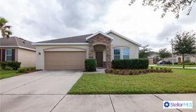 11542 Tangle Stone Drive, Gibsonton, FL 33534