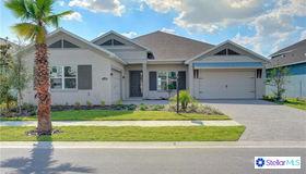 11703 Lake Lucaya Drive, Riverview, FL 33579
