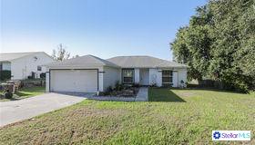 10605 Lake Ralph Drive, Clermont, FL 34711