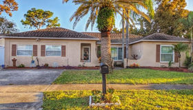 2504 Pinetta Court, Holiday, FL 34691