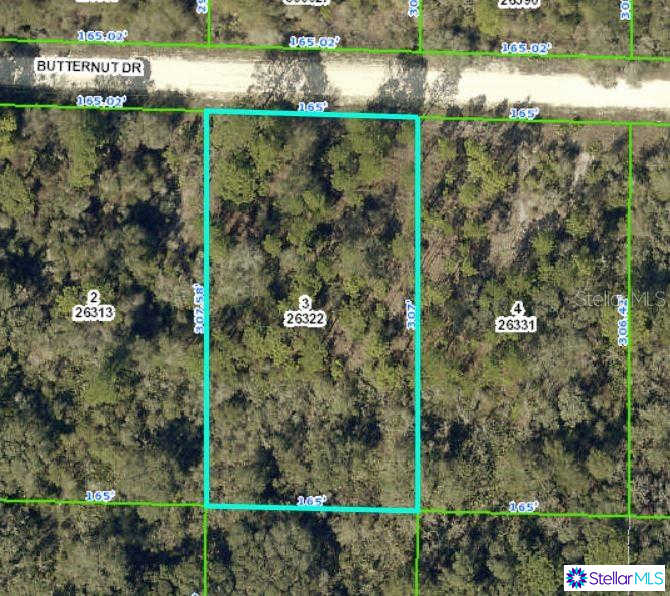 Butternut Drive, Webster, FL 33597 is now new to the market!