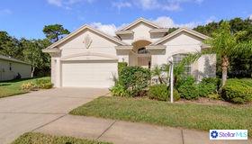 11110 Kiskadee Circle, New Port Richey, FL 34654