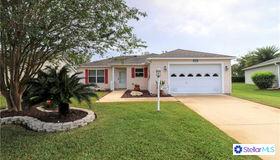 812 Evelynton Loop, The Villages, FL 32162