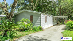 10550 Bay Hills Circle, Thonotosassa, FL 33592