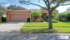 11810 Holly Crest Lane, Riverview, FL 33569