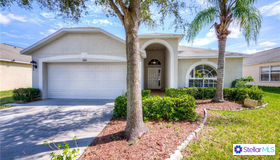 13561 Fladgate Mark Drive, Riverview, FL 33579
