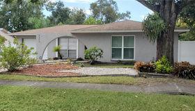 5208 Carrollwood Meadows Drive, Tampa, FL 33625