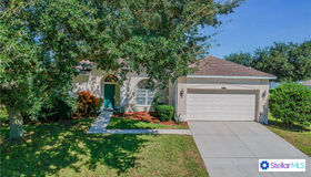 3772 Fallscrest Circle, Clermont, FL 34711