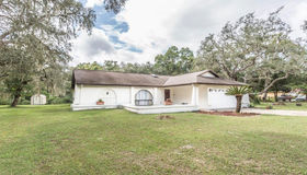 11255 Pine Forest Drive, New Port Richey, FL 34654