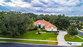 13205 Waterford Run Drive, Riverview, FL 33569