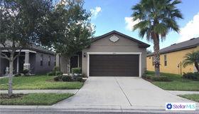 6105 Magnolia Park Boulevard, Riverview, FL 33578