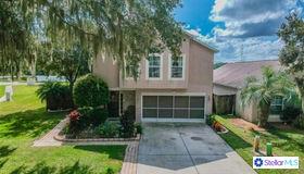 30200 Double Drive, Wesley Chapel, FL 33545